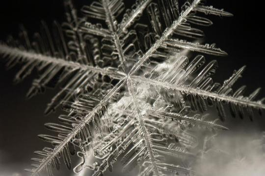 hopehely-snowflake_l