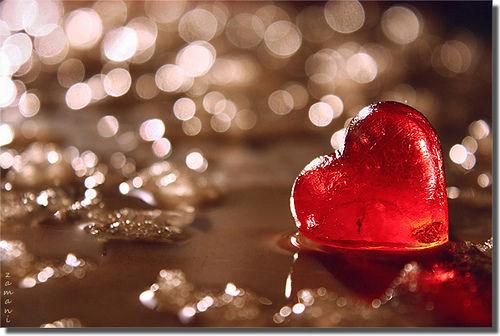 heart-6_l