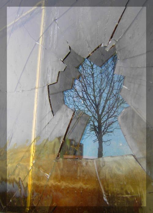 fragments_l