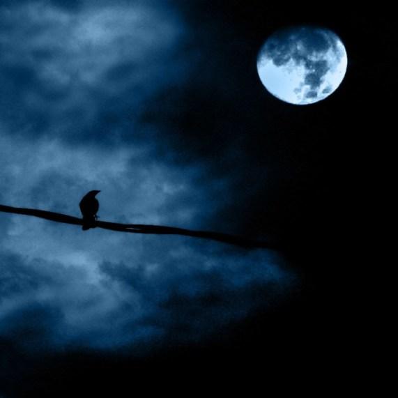 noche-de-luna-llena-full-moon-night