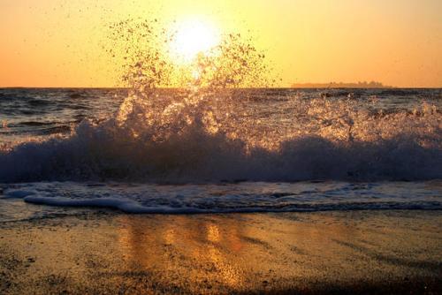 wave-11_l