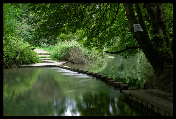 stepping-stones-over-the-river-mole-box-hill-dorking-2_l