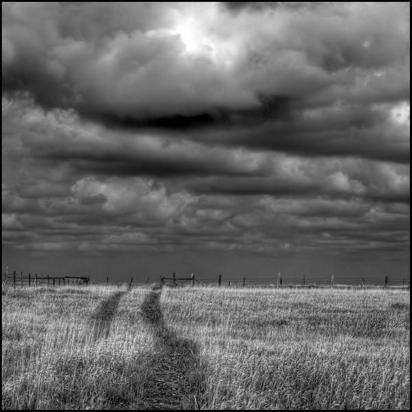 storm-over-the-fenceline-1_l