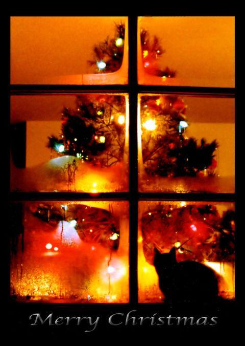 cozy-christmas_l