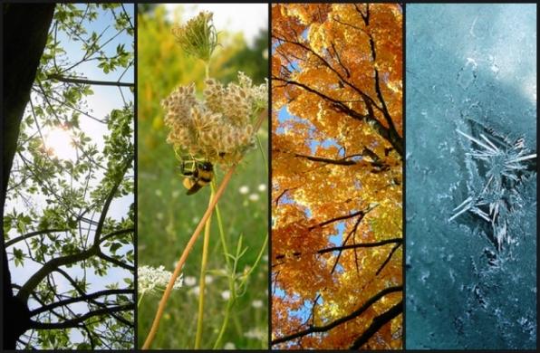 seasons-8